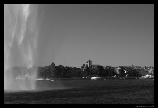 widok z wodą na pierwszym planie