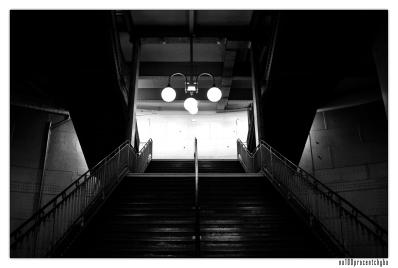metro cite