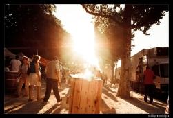 targ w słoneczny dzień
