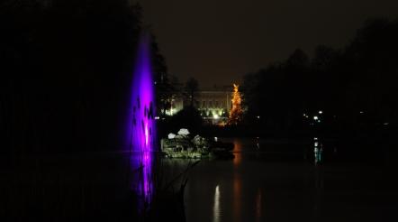 purple Buckingham