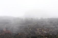 Sudden haze