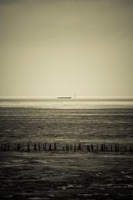 samotna barka