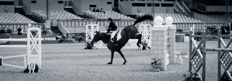 The Royal horse Show 2012 - 001