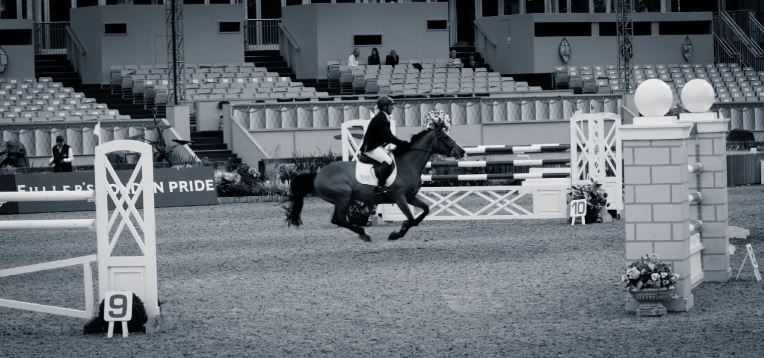 The Royal horse Show 2012 - 002