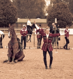 The Royal horse Show 2012 - 006
