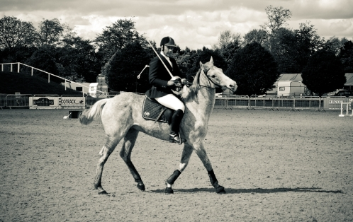 The Royal horse Show 2012 - 014