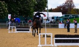The Royal horse Show 2012 - 016