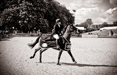 The Royal horse Show 2012 - 017