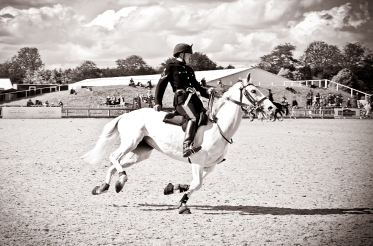 The Royal horse Show 2012 - 018