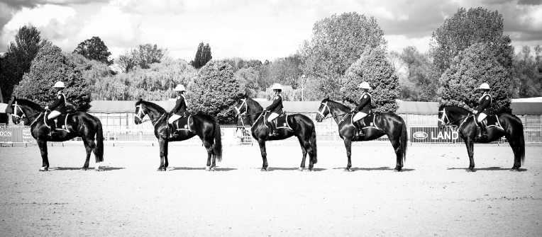 The Royal horse Show 2012 - 020