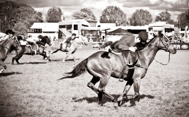 The Royal horse Show 2012 - 022