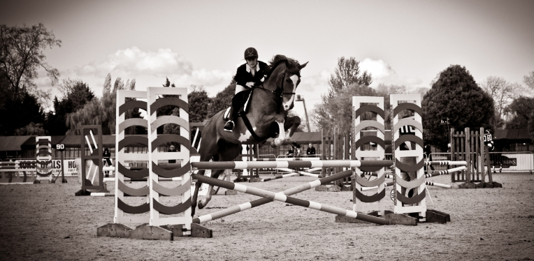 The Royal horse Show 2012 - 026