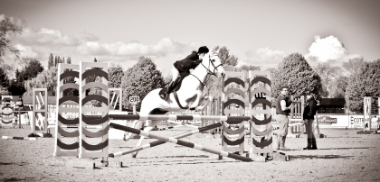 The Royal horse Show 2012 - 028