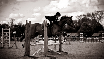 The Royal horse Show 2012 - 030