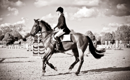 The Royal horse Show 2012 - 031