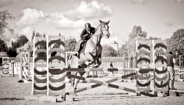 The Royal horse Show 2012 - 032