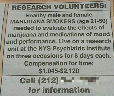 oferta w gazecie dla palaczy / an offer in newspaper for ganja smokers