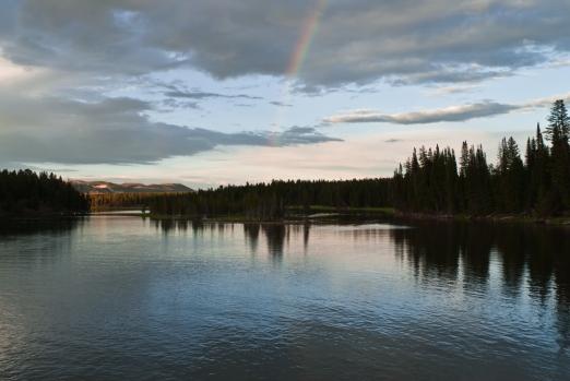 widok na tęczę z Fishing Bridge