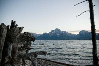 Mt. Moran and Jackson Lake