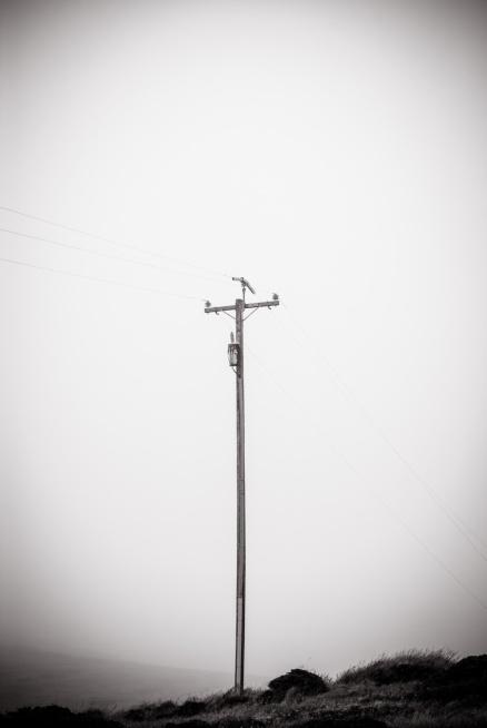 sam we mgle