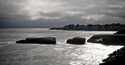 sunset, ocean, rocks and seagulls