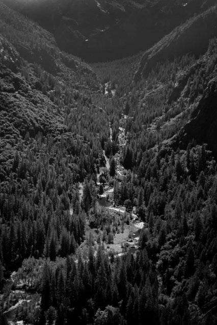 scene with a torrent in the valley / scena ze strumieniem w dolinie