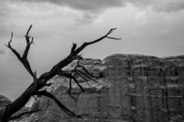 Arches_National_Park_40