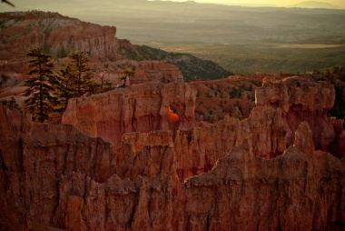 Bryce Canyon - a window of life