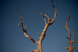 Bryce Canyon - 07