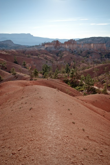 Bryce Canyon - 13