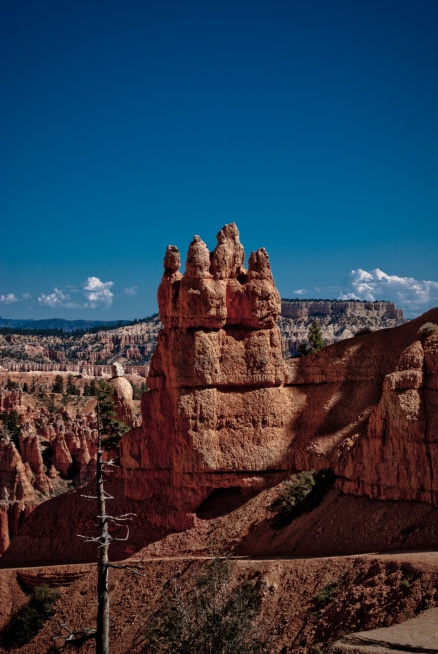 Bryce Canyon - 33