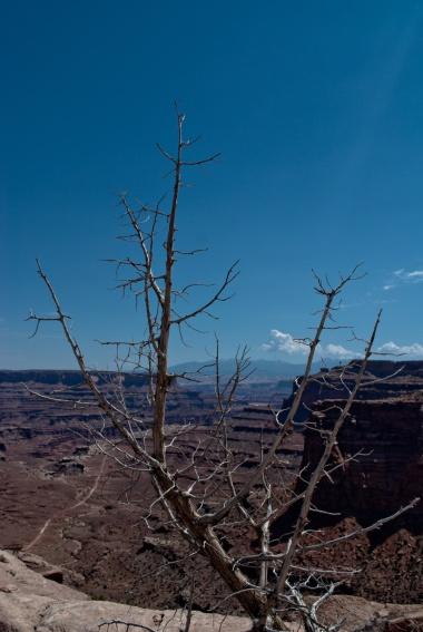 Canyonlands-23