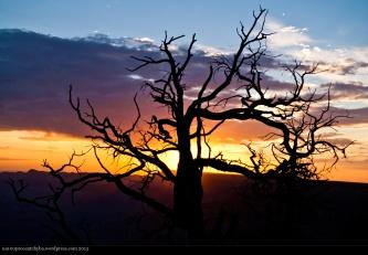 Grand_Canyon-03