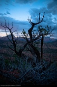 Red_Rock_State_Park-06
