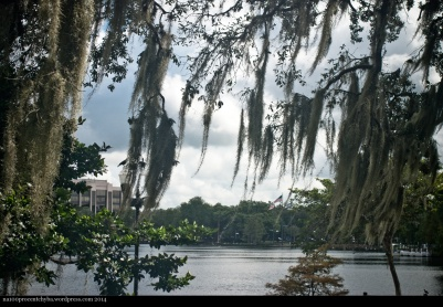 Orlando-12