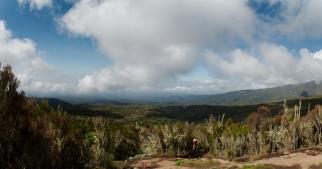 Kilimanjaro - panorama - 004 - On the way to Camp no 2