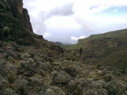 Tanzania-Kilimanjaro-005-IMG_20140125_101344