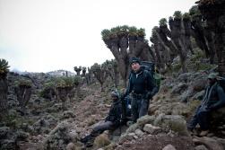 Tanzania-Kilimanjaro-022-DSC_4810