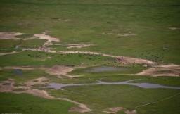 Tanzania-Ngorogoro_Conservation_Area-002-DSC_5085