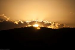Tanzania-Serengeti_National_Park-080-DSC_5734