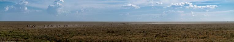 Tanzania-Serengeti_National_Park_2014_[Panorama]-DSC_5222_DSC_5228-7_images