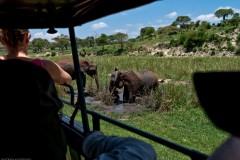 Tanzania-Tarangire_National_Park-017-DSC_6237