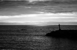 2016-02-08-13-Madeira-DSC_1658