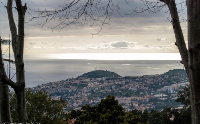 2016-02-08-13-Madeira-DSC_2257