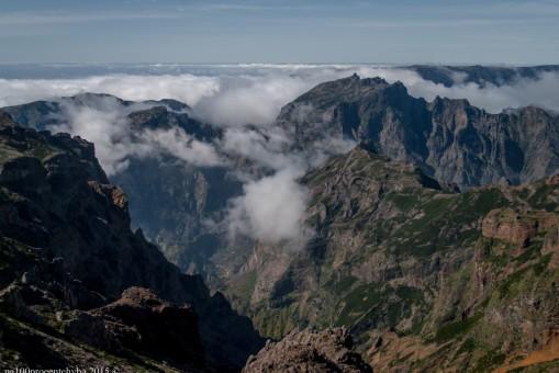 2016-02-08-13-Madeira-DSC_2392