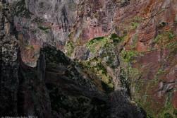 2016-02-08-13-Madeira-DSC_2410