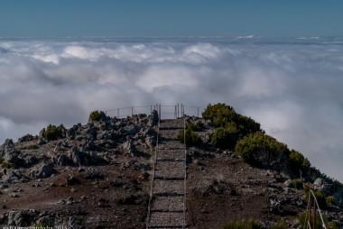2016-02-08-13-Madeira-DSC_2496