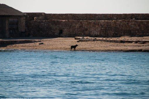 crete-day-3-chania-20160723-092230_dsc_8075