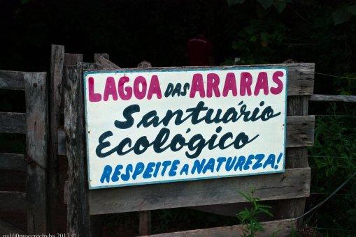 brasil-mato-grosso-cuiaba-lagoa-das-araras-dsc_9030